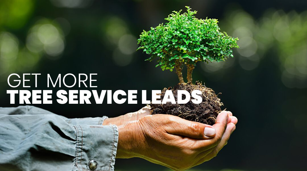 Get More Tree Service Leads With These Proven Marketing Tips
